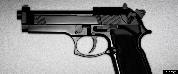 GUN SALES 2011