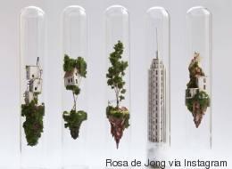 Ces étonnantes maisons miniatures tiennent dans des tubes à essai