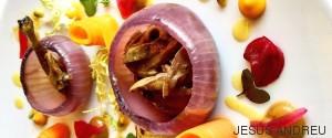 cebolla anatom