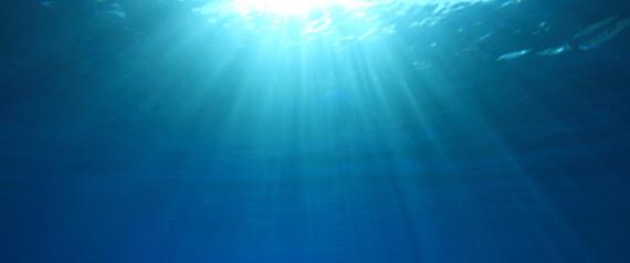 SEA OCEAN UNDERWATER