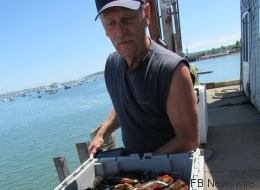 Un pêcheur a trouvé un homard bleu dans ses filets