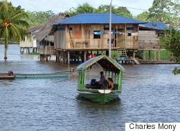 Amazonie: des initiatives citoyennes porteuses d'avenir