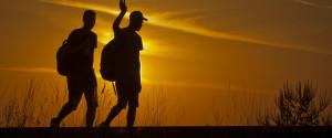 migrants silhouette