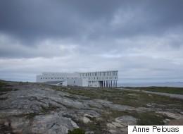 Terre-Neuve : sous le charme de l'île Fogo