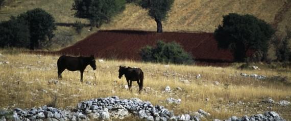 SIATISTA GREECE