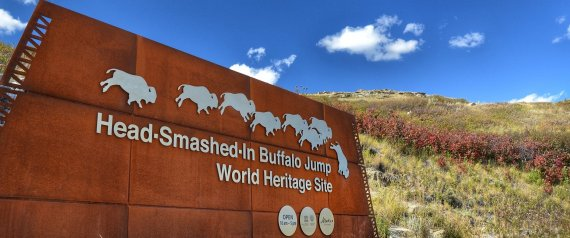 HEAD SMASHEDIN BUFFALO JUMP