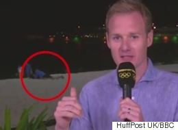 BBC Reporter Insists Couple Getting It On Behind Him Were 'Reading A Book'