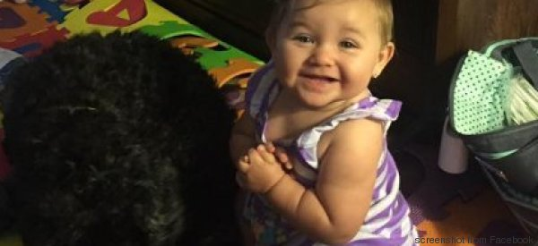 Viviana, 8 mesi, è viva grazie al sacrificio del cane-eroe Polo