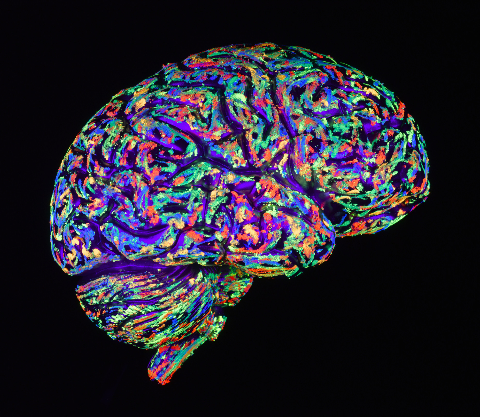 connecting every neuron the future of brain mapping and illness