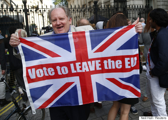 brexit supporter