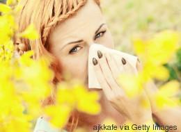 Studie: Mehr Heuschnupfen-Kranke durch Klima-Wandel