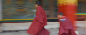 Tibet Monk Running