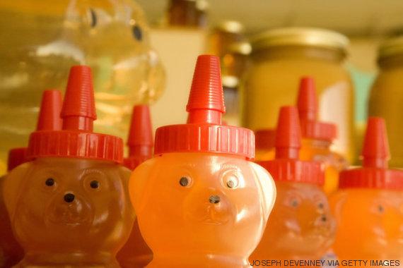 ursinhos de mel