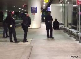 Un Zorro crée la panique à l'aéroport de Los Angeles (VIDÉO)