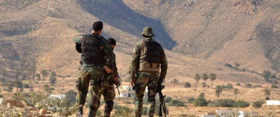TUNISIA ARMY MOUNT