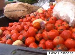 Le mouvement «zéro déchet» gagne les épiceries