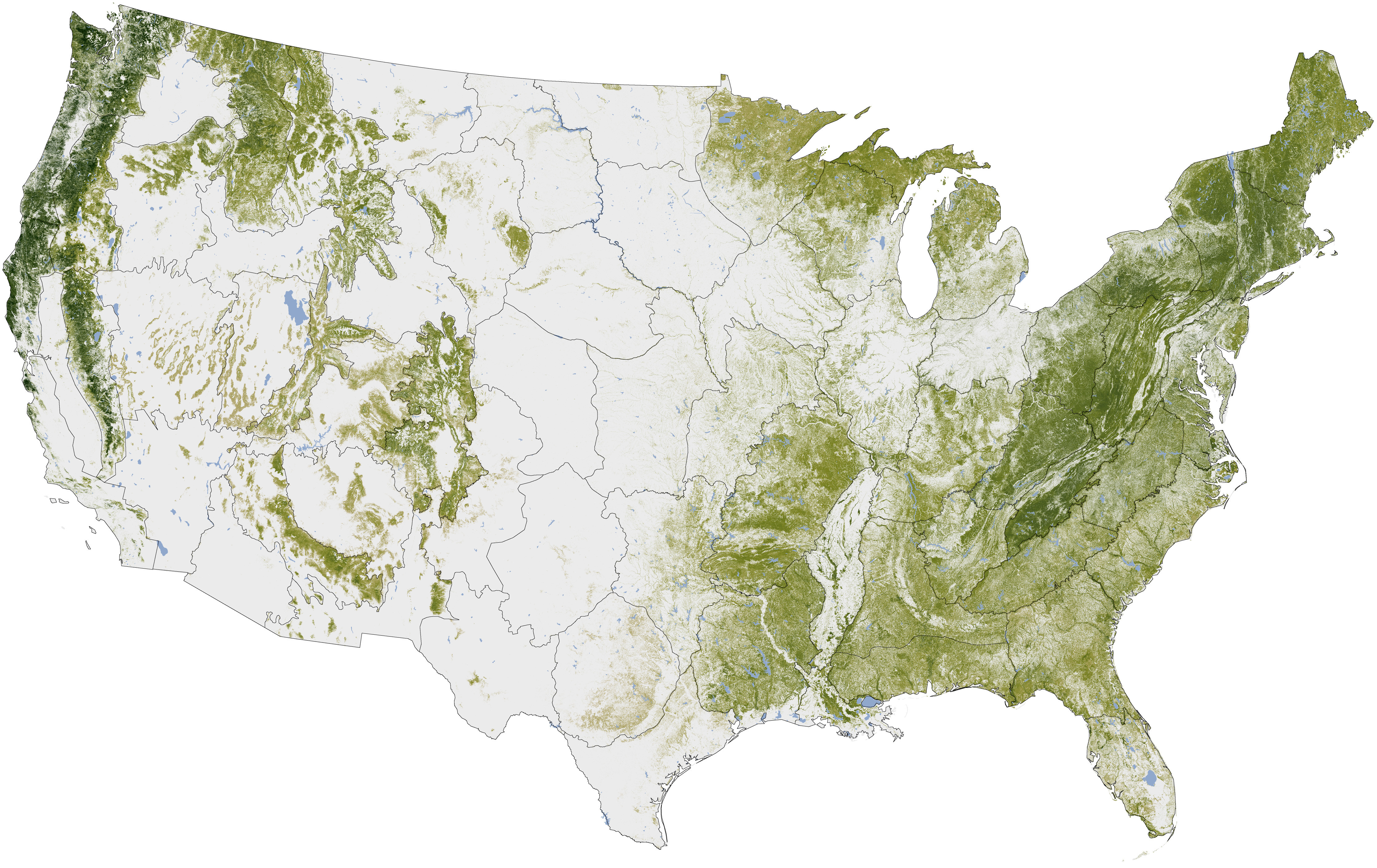 National Biomass And Carbon Dataset Map Depicts US Tree Density - Us density map