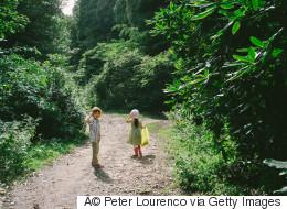 Des Américains sont en colères contre leur ville qui veut planter des arbres dans un parc