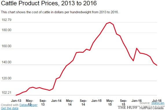 cattle product prices