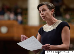 Immigration Test Not About Singling Out Muslims: Leitch