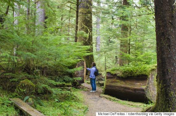 naikoon provincial park hiking