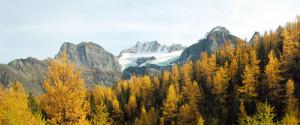 Larch Valley Alberta