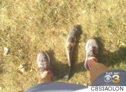 Un poisson-chat tombe du ciel et frappe une femme en plein visage (VIDÉO)