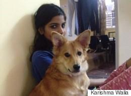 Elle renonce à son mariage arrangé parce qu'il refuse de vivre avec son chien