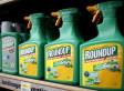 Santé Canada dit oui au glyphosate de Monsanto