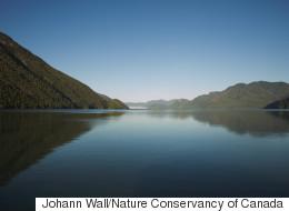 Private Land Donated To Help Preserve Pristine B.C. Rainforest