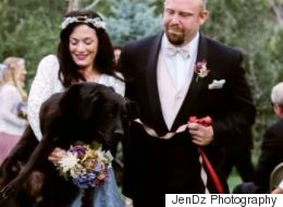 Dying Dog Lives Long Enough To See Owner's Wedding