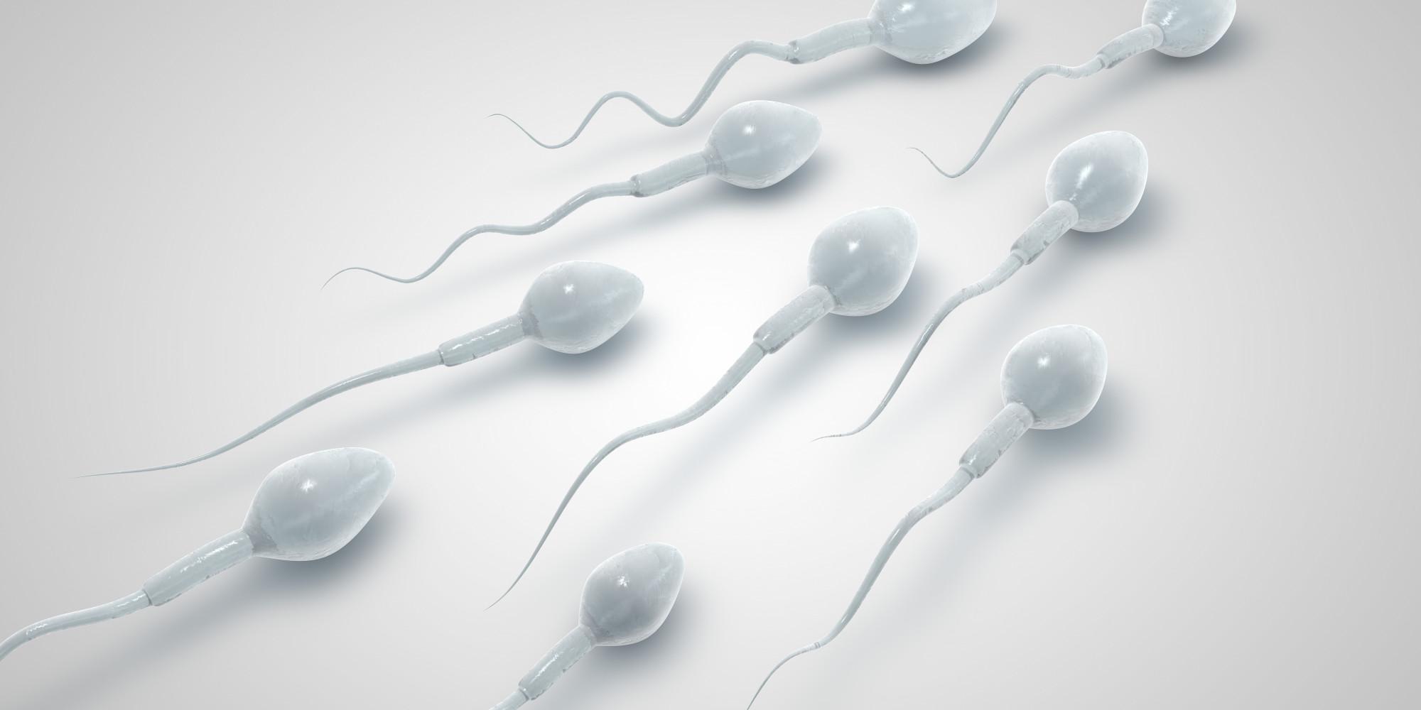 Sc sperm bank casually come