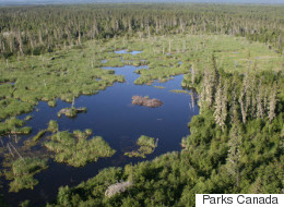 UN Eyes Site C Dam's Impact On Alberta Heritage Site
