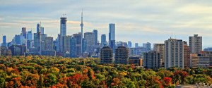 Toronto Urban Forest
