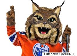 Meet The Edmonton Oilers' New Mascot -- 'Hunter'