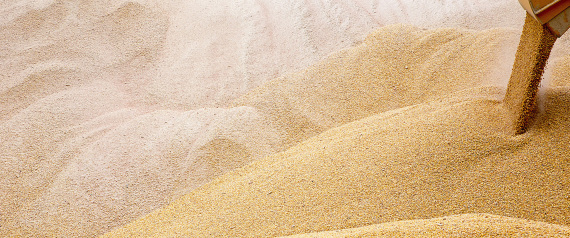 EGYPT WHEAT