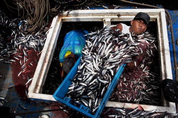 pescador em 2012