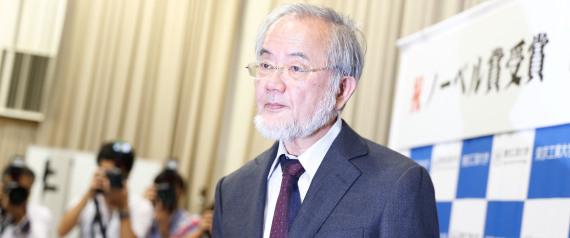 الياباني أوسومي فطيرة أوصلته لجائزة n-YOSHINORI-large570.jpg