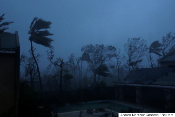 Trees sway with the wind during Hurricane Matthew in Les Cayes, Haiti ...