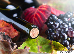 12 vins pour un automne haut en couleurs