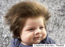 Ce bébé à la chevelure de lion vaut le détour(nement)
