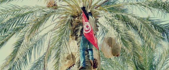 JEMNA TUNISIA