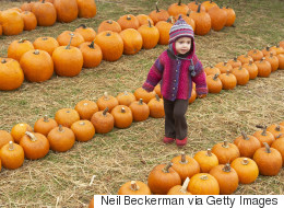 13 Fun And Spooky Pumpkin Patches To Visit Across Canada