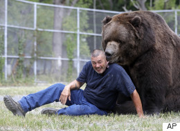 Playing With Bears As Natural As Petting A Dog: Wildlife Rescuer