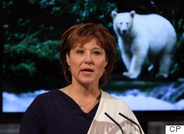 B.C. Premier Blasts Feds Over 'Inadequate' Diesel Spill Response