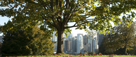 VANCOUVER GREEN SKYLINE
