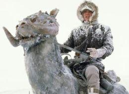 El disfraz de Luke Skywalker y un tauntun que causa furor en internet
