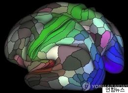 적게 먹는 사람의 뇌가 더 건강한 이유가 밝혀졌다