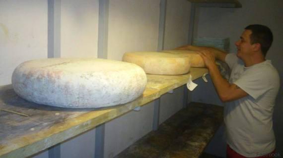carlo oliveri