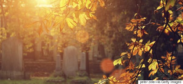 Was Nachhaltigkeit im Bestattungswesen bedeutet